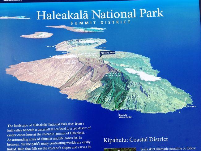 """前日 オアフ島を午後8時頃出航し、マウイ島に向かった。<br /><br /> 翌朝8時過ぎマウイ島カフルイ港に入港。<br /><br /> 9時過ぎ問うツアー専用の観光バスで島内観光に出る。50人乗りの大型バスに、添乗員、現地ガイド含めて総勢18名席は自由席<br /><br /> まず向かったのは、""""ハレアカラ国立公園""""であった。この国立公園は、世界最大級のクレーターが有り、標高3000mの頂上は天体観測のベストポジションで各国の宇宙観測用の天文台が沢山置かれている。<br /><br /> バスは左右にサトウキビ畑が広がり、平地から徐々に山を登り始める。 段々カーブが多くなり、標高をあげていく。<br /> 標高2000m地点には、観光案内所があり、銀色の葉を持つ銀剣草がありました。<br /><br /> 頂上は高所である為、昼間は霧が出やすいということでなるべく早い時間に頂上に到達すべく先を急いだ。案の定九十九折の道を登るに連れて霧状の雲が増えてきた。また大型バスは、30分に1台しか入れないという管理が行われている。したがってバスが集中すると待ち行列が出来るそうだ。我々は幸いにして前にバスが居ない為そのまま入る事が出来た。<br /><br /> 3000mの頂上に到着、雲がかなりのスピードで上り始めていたが、幸いにして火口は見る事が出来た。しかしすぐに雲が覆い始めて我々が下山する時にはすっかり雲に覆われていた。幸運であった。<br /><br /> 登ってきた道を引き返し、船に戻る。昼食は船のビュフェで採る。<br /><br /> 午後は、船内で""""プライド・オブ・アメリカ号""""の船内ツアーそして自己紹介が行われた。<br /><br /> 船はこの港に停泊。<br /><br /> 翌日、まず島内南部のかってのハワイ王国の首都として栄えたラハイナに向かう。途中海沿いをホエールウオッチングしながらバスを走らせる。ここの沖は冬場鯨が出産に来るためホェールウオッチングの名所として有名。 1~2月が最盛期という事で少し遅かった。それでもまだ残っている鯨が、時々潮を吹き、子鯨を連れている姿がバスの車窓から時々見えた。<br /> マウイ島は、かっては島一面にサトウキビ畑があり、世界各国から移民が入って人口も多く賑わっていたようである。この畑も競争に負け、今は宅地になり世界のお金持ちが別荘地として過したりするようである。<br /><br /> 続いて、かってのサトウキビ畑の跡地に作られた、トロピカル・フルーツ農園訪問。広大な敷地に、多くの植物(バナナ、マンゴ、パイナップル、スターフルーツ、コーヒー豆他)が育てられ、園内を電気トラムに乗り園内を見て廻った。"""