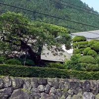 東京の奥座敷、とD級グルメ。