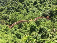 南寧市龍虎山の猿さんは川を泳ぎます