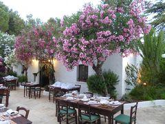 プーリア州優雅な夏バカンス♪ Vol148(第8日) ☆Ostuni:歴史ある豪農「Masseria Il Frantoio」広大な庭園♪