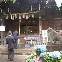 紫陽花と白山神社
