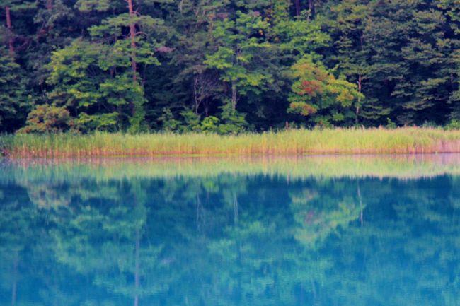 裏磐梯レイクリゾートに宿泊して夕方と早朝に五色沼自然探勝路を散策しました。エメラルドグリーンやコバルトブルーに輝く水面を楽しみました。<br />表紙は早朝の弁天沼