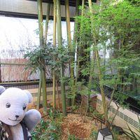 08ドーミーインPREMIUM京都駅前を探検する~大浴場見学と館内編(ドーミーめぐり2017その8)