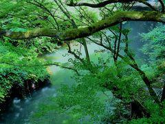 石川県 山中温泉郷に行ってみた -雨は降らねど曇り空- オッサンネコの家族旅