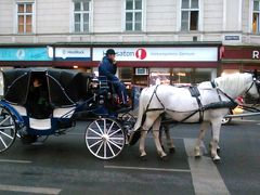 オーストリア・チェコ旅行1 ベルベデーレ宮殿・シュテファン寺院