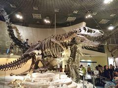 国立科学博物館と国立西洋博物館