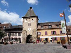 ブドウの丘を越えて♪ニーダーモルシュヴィールでフェルベールのジャム☆カーヴ・ド・テュルクハイムでワイン 新緑のドイツ・フランスの旅7-1
