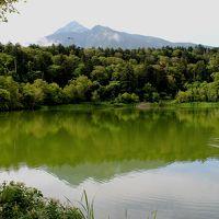 夏の利尻島ハイキング ~利尻富士と沼と湿原と植物とアザラシと海~ 3日目