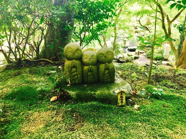一度泊まってみたかった鎌倉パークホテル<br />酵素風呂でデトックスの後はフレンチの夕食<br />和食の朝ごはんでお腹に大満足<br />長谷寺で秋を感じた充実のプチトリップでした