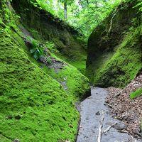 神秘的な「第二の苔の洞門」(北海道支笏湖)