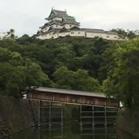 2017夏休みは世界遺産・高野山を中心に和歌山・大阪巡り �初日は和歌山市内を観光して関西慣れ〜後編〜