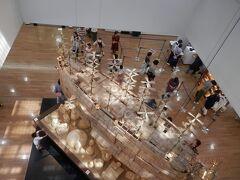 長崎11c歴史博物館は諏訪神社の敷地内