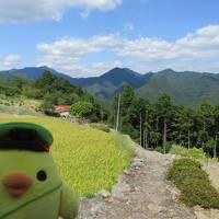 日本一長い奈良交通の路線バスでたびするトリ