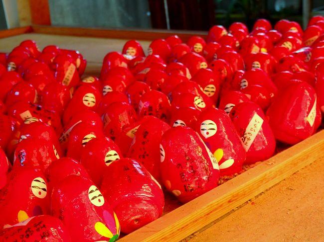 9月9日重陽の節句。<br />京都の神社でも上賀茂神社などで行事が行われていますが、河原町五条にある女人守護の市比賣神社で恒例の重陽祭が行われるということで出かけてきました。<br />神社までは四条通から南へ高瀬川沿いに続く下木屋町通りを歩いてみました。