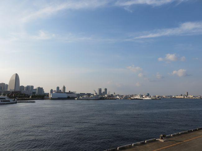 お墓参りも兼ねて、主人の実家のある埼玉へ<br />そこから、横浜でナイトクルーズ&ヨコハマトリエンナーレ体験<br />あっという間の2日間のプチバカンスでした