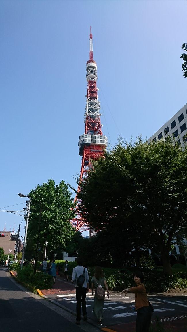 今回は、人形町からぶらぶら旅のスタートです。人形町の小網神社へ行き徒歩で、親子丼の「玉ひで」で昼食。腹ごなしで、東京タワーへ行ってきました。天気も良く暑い一日でしたが、久しぶりの東京タワーに感動してしまいました。