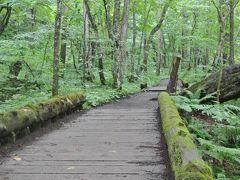 2017夏、東北に想いを馳せて...秋田・青森・岩手への旅(2日目 その1、朝の静かな奥入瀬渓流で至福のひと時・・渓流モーニングカフェと渓流散策)