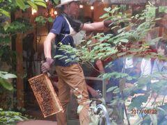 静岡k4養蜂場