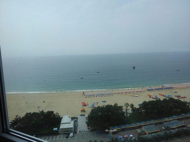 特に韓流ファンでもないんですが( ´_ゝ`)<br />福岡住みなので船で韓国(釜山港)に行けるんです。<br /><br />子供達を連れて、かれこれ釜山10回目の旅... <br /><br />子供達の目的は海雲台ビーチ!<br />私の目的は、2年ぶりの再会になる韓国人家族宅に3泊するので、子供達の英語や他文化に対する興味が少しでも上がってくれたら... と。<br /><br />JR 高速船ビートル ¥11,800×3<br />燃油代+港使用料  ¥5,500(往復3人分)<br />東横イン海雲台2 ¥20,000(ツイン3泊) <br />キッザニア釜山 ¥6,600(大人×1 子供×2)<br />Wifi ¥2,600(7日分)<br /><br />6泊7日で、博多港の駐車場代やらもコミコミで合計 ¥126,000 で楽しめました!<br /><br /><br />