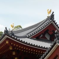 大阪「バベルの塔」~京都中村藤吉「生茶ゼリー」