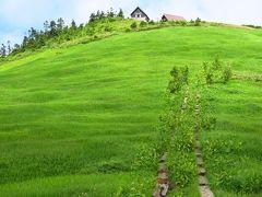 ハクサンコザクラ咲き乱れる稜線に発狂寸前 会津駒ヶ岳