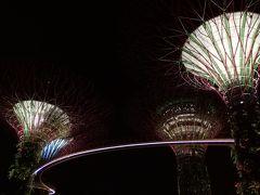 JALサファイアを目指して第三弾~またまたシンガポールに行くのだ!②