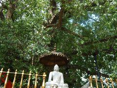 '16 GW 兄妹3人旅 スリランカ編-8 ~キャラニア寺院、帰国へ~