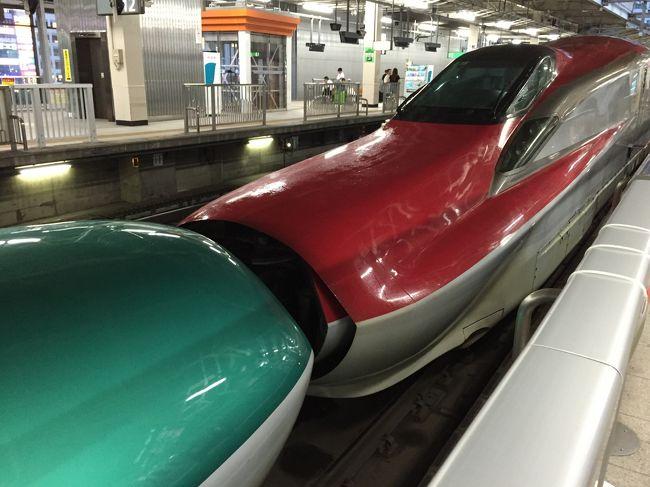 <br />久々に飛行機で遠出の旅行。<br />長女にとっては初めての飛行機でした。<br />あいにくの天気でしたが、楽しく過ごすことができました。<br /><br />初日は秋保温泉で温泉&プール三昧!<br />仙台駅直結のホテルに泊まったので、仙台駅散策も楽しみました。<br />関西在住なので、新幹線のはやぶさとこまちには家族みんな大興奮でした!<br /><br />