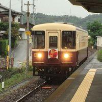 天竜浜名湖鉄道を巡る