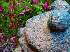勝念寺の小さな庭がたくさんの秋を振舞う