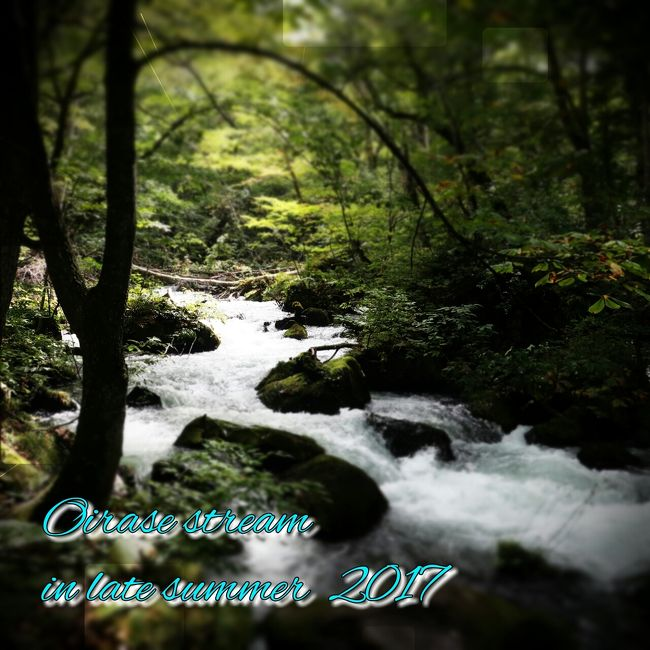 GWにプリトヴィッツェを訪ねた為か<br />今年は渓流に魅せられています。<br />日本の渓流も訪ねたいなと<br />色々調査企画中ですが<br />今回は奥入瀬渓流を訪ねる事に…<br /><br />10月に予定していましたが、宿が上手く<br />押えられず、とりあえず押えていたSWに<br />訪問する事になりました。