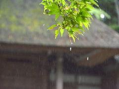 光明院から雨の法然院へ!2017年