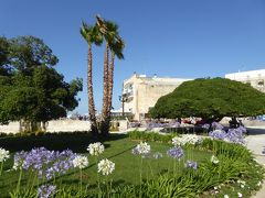 プーリア州優雅な夏バカンス♪ Vol225(第12日) ☆Otranto:オートラントの美しい公園「ドンノ広場」花がいっぱい♪