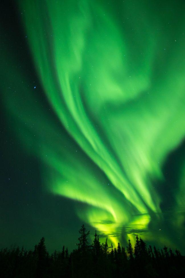 2017/9/13~17、夏シーズンのオーロラを見にカナダのイエローナイフに行きました。オーロラは人生2度目ですが、もっと強いオーロラを見てみたいというのと、星を撮るのが得意なカメラを買ったので、それでオーロラを撮ってみたいというのが目的です。<br />幸先のいい初日を経て、かなりオーロラが活発な二日目。空全体を覆うようなオーロラが次々現れます。<br />そんな二日目の後半と、黄葉のハイキングからの最終日の様子です。