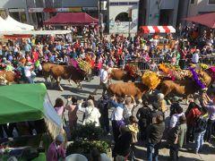 クーフシュタインの牛下ろしパレード
