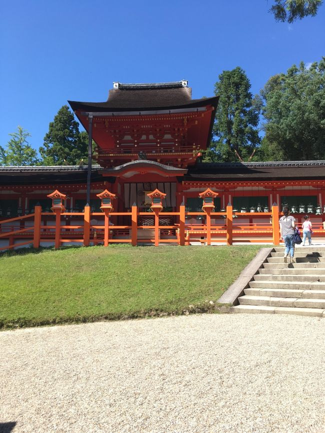 ちょっと別の用事があって奈良へ行くついでに、小学校の修学旅行以来の奈良観光をしようと思い立ち、一日早めて訪問してきました。<br />東京からだったので、新幹線、JRの都路快速乗り継いで、ついたのが昼過ぎ。ホテルに荷物おいて。。。駅からバスに乗ってまずは春日大社へ(寺社巡りでは神社の方が早く終わるイメージがあり)<br />JR奈良駅からは循環バスが出ていて、ICカードで乗車出来たので便利でした。<br />春日大社行って、若宮さん行って。。周りの十五社めぐって。。ってしてたら軽く1-2時間はたってしまい、そこから東大寺に向かいましたが、東大寺さんも広し!とりあえず大仏殿は行って、そこから日暮れまでに二月堂、法華堂回りたい!ってガンガン歩いて、それでも時間厳しかったですね。。。ミュージアム閉館前に滑り込み。<br />戒壇堂や正倉院の方へは行けませんでした。。。また再訪します。東大寺だけで半日はいるなぁ。<br />その後はお店なんかも閉まってしまうので、退散。しかもかなりのウォーキング量(2万歩位)で疲れてしまい、そこからならまちへ行く余裕もなく。駅までバスで帰りました。ホテルで温泉!<br />翌日はお昼から用事があったので、午前中で興福寺と元興寺を回りました。興福寺さんは色々工事中でタイミングが悪く、阿修羅は見れず、御朱印に昨今のブームを見越した対応を見て、ほんのすこし残念でした。<br />奈良公園一帯にいる鹿もせんべいを狙いたまにアグレッシブになるけど、基本かわいらしい。のんびりした空気になるし、草を食べてくれるのであれはあれでよいのではないかと思ったりしましたw<br />今度はもう少しゆるい日程を組んで、東大寺メインで回りたいと思いました。<br />