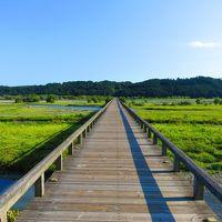 愛知で科学と動物、静岡で大自然を楽しんだ