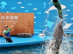 仙台うみの杜水族館4/5 イルカのパフォーマンス ☆多彩な演出・ダイナミックなジャンプ