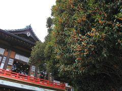 箱根の紅葉はずっと先(9月27日・28日)