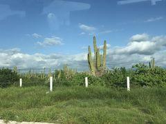 駐在のついでに 【その120】メキシコ遠征 現地速報(3)