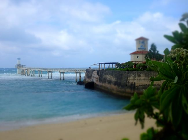 <br /><br /><br /><br />9月の沖縄観光本編、もぉ師走、あやうくボツ原稿になるとこだった(笑<br /><br />前回の南部・中部、そして今回の北部、西海岸。<br />沖縄本島鉄板観光コースばっかりだが、ほぼほぼ観光はこれでもうよろし。<br />ビーチも廻りたいところ、ほぼほぼ見られたし(見ただけっていうのがミソですが)。<br />次回からは、私がめざす沖縄やぁーーーーーー(謎w)<br /><br />■茅打ちバンタ<br />沖縄最北端の地・辺戸岬の手前に位置する茅打ちバンタの崖上から景色は沖縄屈指の絶景として知られている。崖は約80mあり眼下の海は思わず引き込まれそうな深いブルー。バンタ(ハンタ)は沖縄の方言で崖のことを言い、地名の由来は、茅を束ねて投げたところ下からの強風でバラバラになって飛散したことによると言われている。また、眼下左手に広がる宜名真の茅葺屋根の茅を辺戸で刈って、崖から投げて運搬の労を省いたことによるという説もあり。台風18号の影響により澄んだ海ではなくドンブラッココ荒波であったがこれも一興。<br /><br />■辺戸岬<br />沖縄本島にある最北端の岬。那覇空港からは沖縄自動車道(高速)と一般道を利用して、車で約2時間30分のロングドライブ。沖縄海岸国定公園に指定されている周辺の景観と合わせて、沖縄の自然のパワーを感じさせてくれる。<br /> 天気のよい日には、約22キロ離れた鹿児島県の与論島や沖永良部島を水平線上に望むこともでき曇り空でもうっすら見えた。<br />岬の中心に建てられている「日本祖国復帰闘争碑」は、昭和47年(1972)、アメリカの統治下にあった沖縄が日本に返還され、沖縄県になった時に建立されたもの。幾度となく祖国復帰の闘争が繰り返されていたことを忘れまいと、沖縄本島最北端であるこの地に碑が建てられている。<br /><br />■大石林山<br />ヤンバル(山原)と呼ばれる沖縄本島北部エリアにあって安須杜(アシムイ)一帯はアマミキヨの島建て神話の息づく、琉球王朝の聖地のひとつ。<br />大石林森は安須杜四峰シノクセ、アフリ、イヘヤ、シジャラのうちイヘヤ、シジャラの杜巡る一帯である。2億年前に隆起し、時とともに侵蝕された石灰岩が奇岩や巨石を形成し、そこに亜熱帯の杜が広がった。すり鉢状のドリーネやタワー状の石灰岩台地、鋭く尖ったピナクルなどさまざまな熱帯カルスト地形を大石林山で見ることが出来る。熱帯カルストとしては、世界最北端に位置するといわれる。<br />辺戸岬から眺めると、「仏像が眠っている」と表現されるが、「モアイ像が横倒し」にしか見えなかった。<br />2日後、渋谷駅南口のモアイ像をみておもわず噴き出しそうになった。ここで、また出会えとたは、笑たわw<br /><br />■喜如嘉集落(きじょかしゅうらく)<br />喜如嘉集落は、長寿の里として知られており、山々の深い緑、澄んだ空気と清らかな水がある地域。自然に恵まれた喜如嘉集落は沖縄の桃源郷、あせらず、ゆったりと。また、沖縄を代表する上質の織物、芭蕉布の里としても知られる。古い町並みが残る集落には原料となるイトバショウが生い茂る。<br /><br />■喜如嘉の七滝(ナンダキ)<br />喜如嘉集落の先はすぐ自然溢れる森の中へと続く。七滝への入口には、鳥居があり、ここをくぐれば滝はもう目の前。鳥居から左側を進むと七滝に到着。滝を流れ落ちる水の軌道が7回変わるということから「七滝」と名づけられたそう。<br />道はすごく狭く離合する場所もないのが一番の絶景。<br />都会の人は運転まず無理です、遠慮して下さいね。<br />そうそう、肝心なこと、チョロチョロ滝なのであんまし期待もしないように。<br /><br />■屋我地島<br />瀬戸内海のように波穏やかな「羽地内海」の沖合いにありワルミ海峡や古宇利島が見渡せるオキナワの松島。屋我地島では「日本の重要湿地500」に選定される羽地内海の海岸にマングローブ林があり、推定樹齢100年のオヒルギ巨木群落をはじめメヒルギ・ヤエヤマヒルギ・ヒルギダマシの4種類が生育。<br />チョロッとしたマングローブ群ですがね。内海でたしかに瀬戸内海や松島にいるみたいな風景が広がる。<br /><br />■宇古利島<br />古宇利島の見どころは、さまざまなブルーに変化する海。開通以来、沖縄を最も代表する観光スポットとなった古宇利大橋は、両サイドにコバルトブルーの海が広がり、まるで大海原に浮かんでいるような気分が味わえる。台風のさなかでもまぁそこそこ楽しめた。そんな古宇利大橋を渡って島に入ると、すぐ目の前に現れるのが島のメインビーチである古