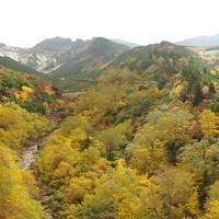 秋の北海道旅行