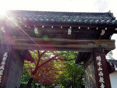170818-19青春18きっぷで行く! 滋賀の豊かな水の文化を巡る旅【2】西教寺→大津グルメ