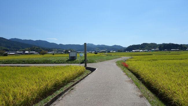 明日香路銀輪行 「いにしえの 都は明日香 川筋に 流れは続き 難波江へと」