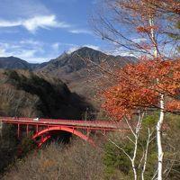 赤い橋と八ヶ岳 を眺めに ~ 2011年11月~