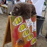 田峯城祭り・津具マルシェの奥三河発見ツアー、豊橋鉄道