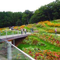 秋色の丘 コスモスゆれる里山ガーデン