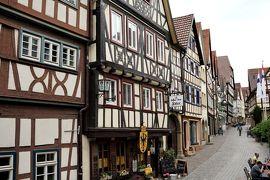 中世の面影残る石畳の坂の街、バート・ヴィンプフェン 新緑のドイツ・フランスの旅9-2