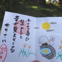 アートな御朱印が人気の宝徳寺と赤ちゃんライオンが可愛い☆桐生が岡動物園へ