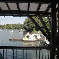 本日 東急池上線 無料 洗足池公園訪問